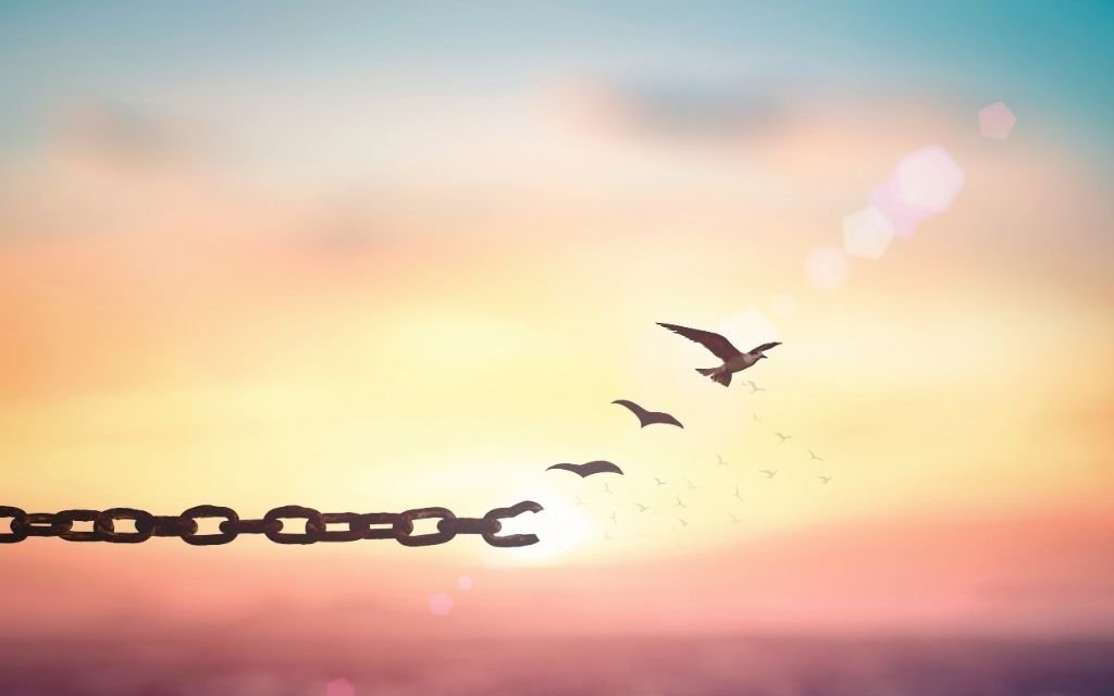 Die Kraft der Vergebung